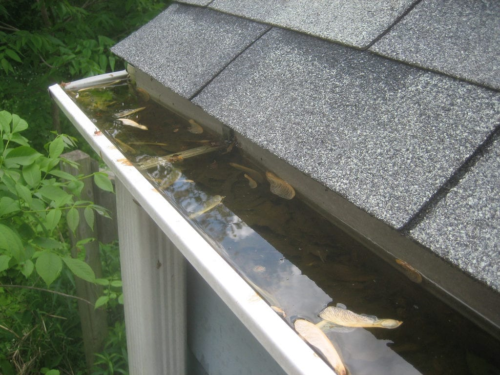 Gutter Cleaning Services New Jersey