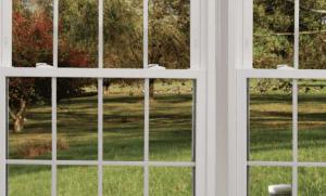 Hillsborough Replacement Window Contractor